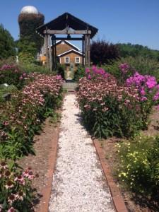 Delaware Garden